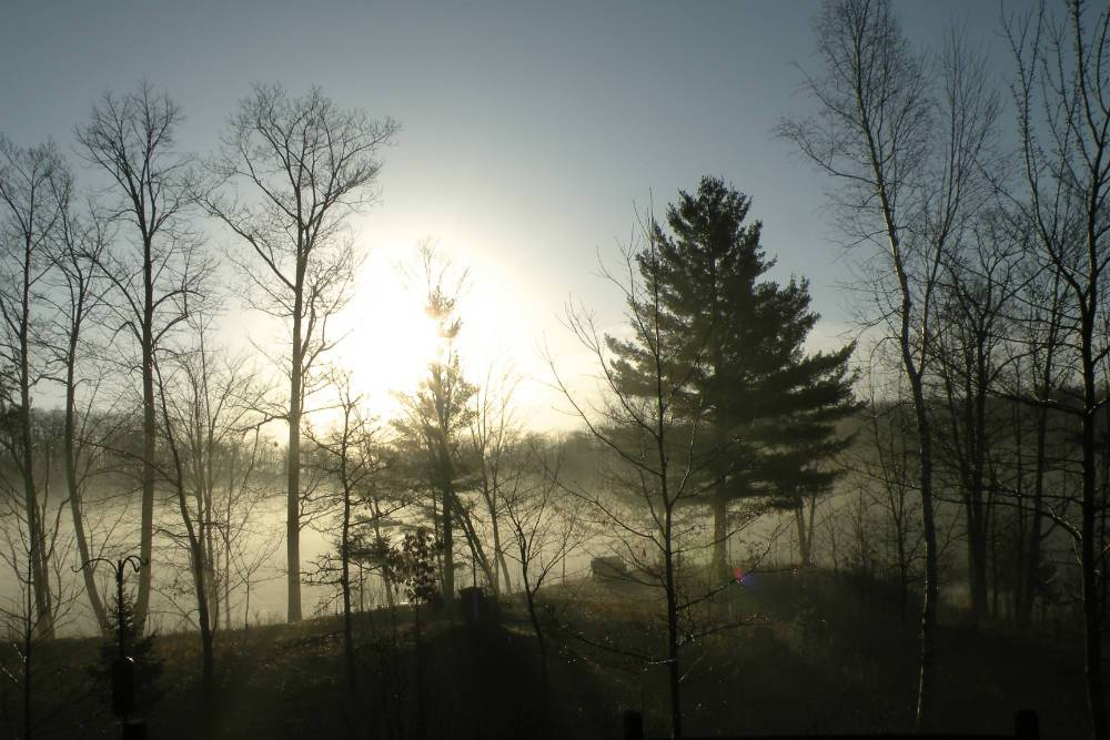 Morning mist Shover
