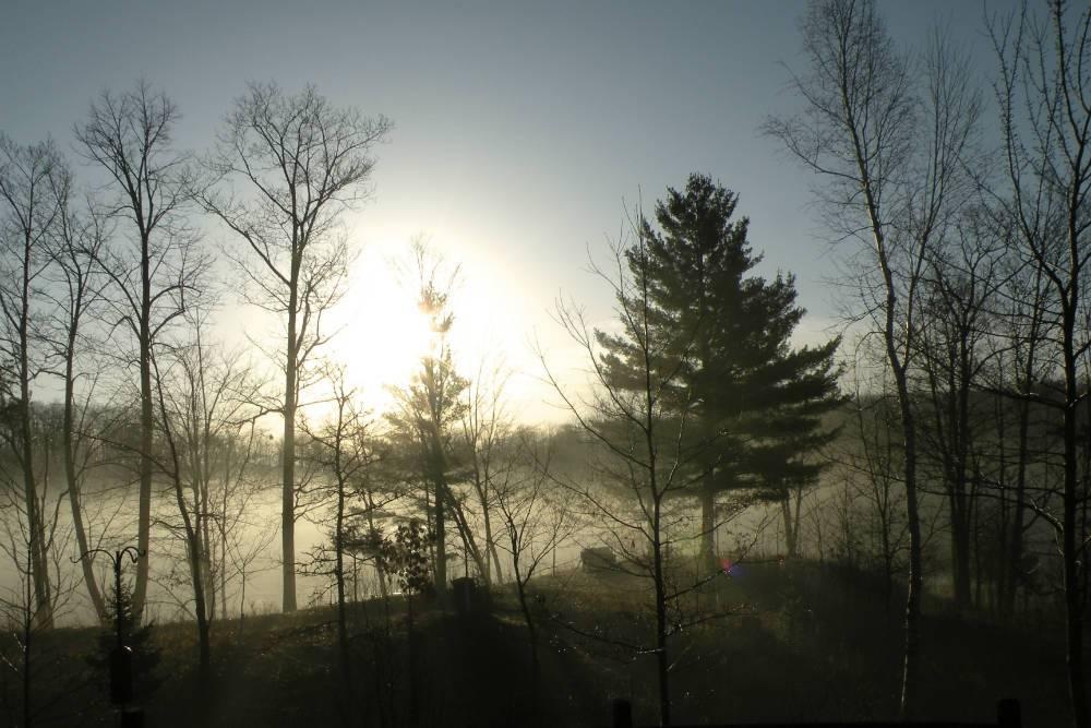 Morning mist Shover