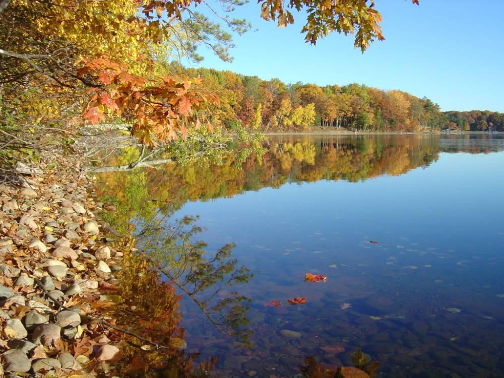 Stone Lake, fall shoreline
