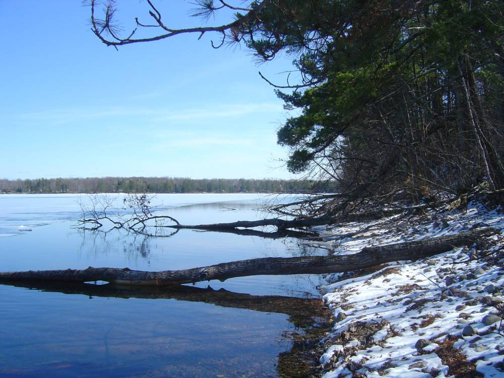 Stone Lake ice out #4