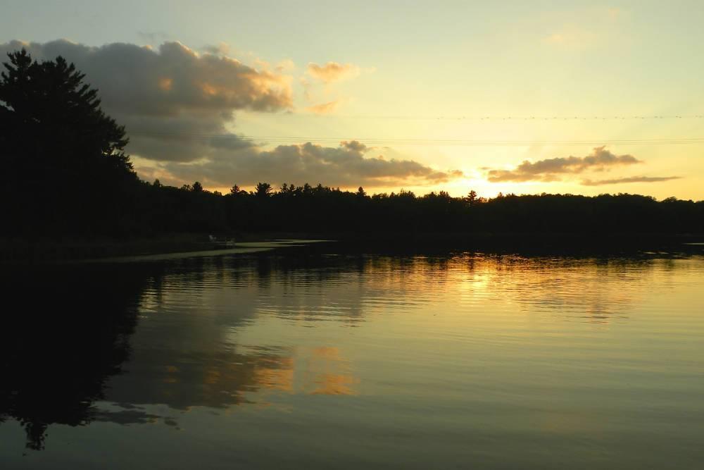 sunset Shover