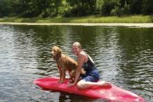 Dog on kayak Shover